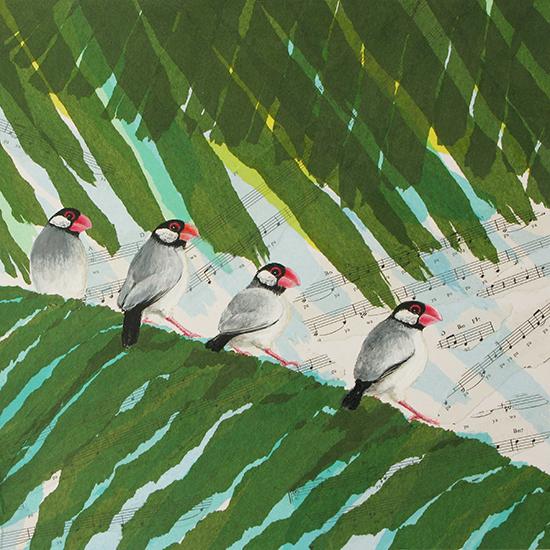 4羽の文鳥
